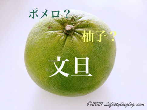 台湾の文旦(ぶんたん)・ポメロ・柚子