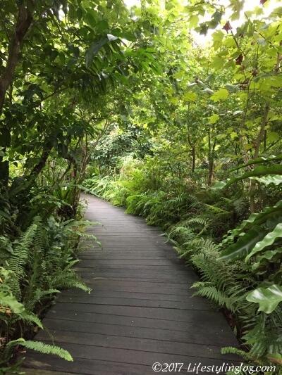 taipei-botanical-gardenIMG_3080