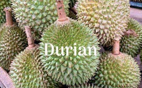 マレーシアのドリアン