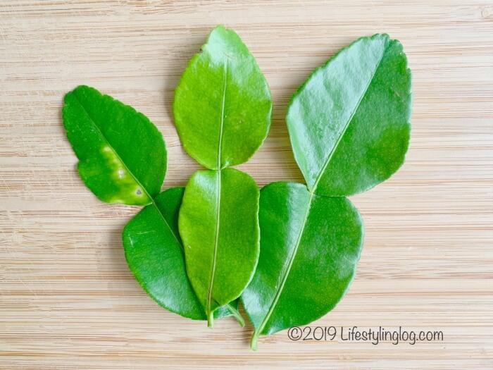 kaffir lime leaves(こぶみかんの葉)