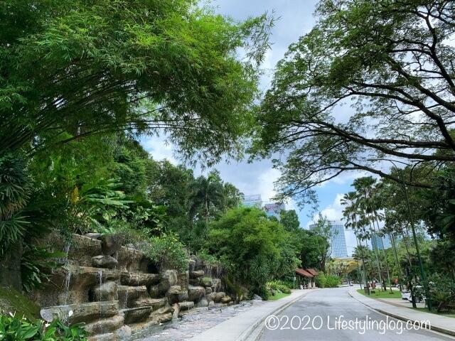 ペルダナ植物園内の木々