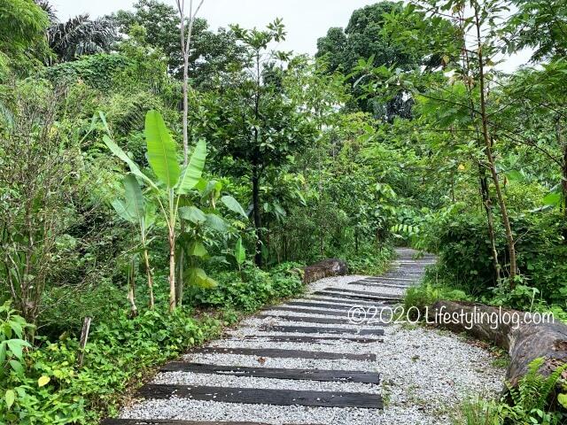 Taman TuguのNursery Trails