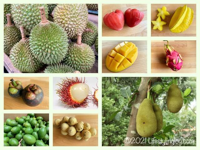 マレーシアで購入できるトロピカルフルーツ(南国果物)