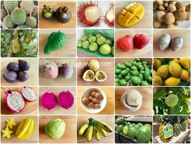 マレーシアで購入できるトロピカルフルーツ(南国果物)一覧