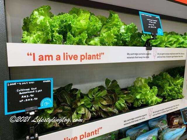 Qra @ The Fiveで販売されているCultiveatの野菜