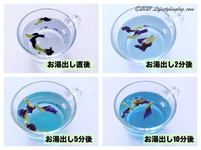 お湯出しで作る青いお茶(バタフライピーティー)の色の移り変わり