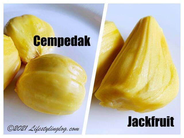 コパラミツ・Cempedak(チェンパダ )とジャックフルーツ(パラミツ)の比較