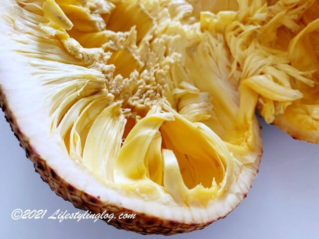 コパラミツ・cempedak(チェンパダ )の実のほかに食べることができる部分