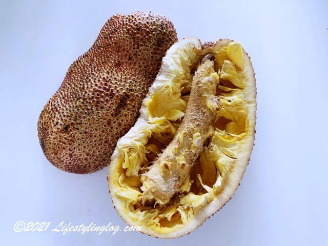 コパラミツ・cempedak(チェンパダ )を取り出した後の果皮と軸