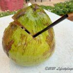 マレーシアのココナッツ
