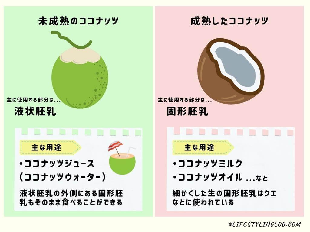 未成熟のココナッツと成熟したココナッツの用途の比較